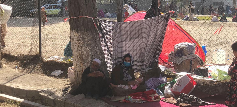 Muchas familias afganas fueron desplazadas cuando los talibanes entraron en Kabul.