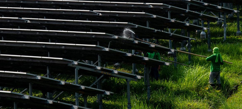 Unos trabajadores limpian los paneles solares de una granja de energía solar en Manila (Filipinas).
